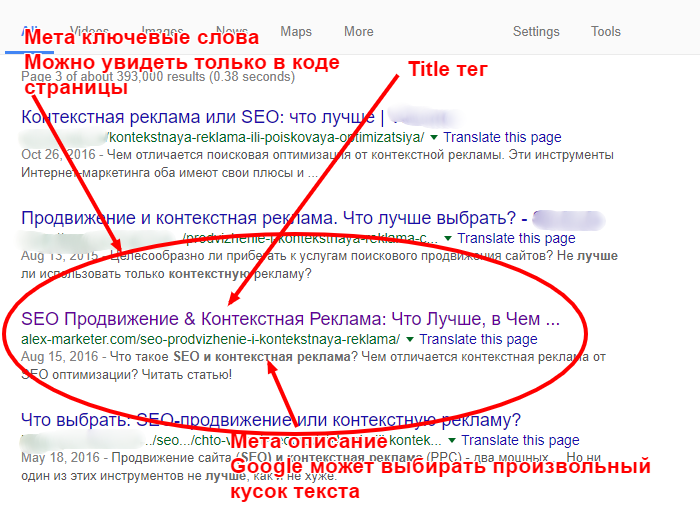 site-in-search (2)